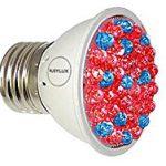 LED Acne Scar Bulb